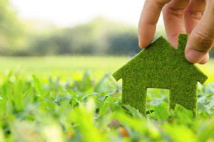 Eco Living